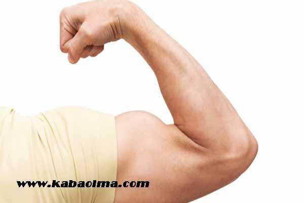 kol kası hareketleri, evde kol kası yapma, evde yapılabilecek kol kası hareketleri