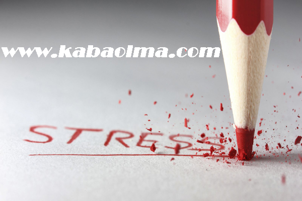 stres beyni etkiliyor, stresin beyne etkileri, stres ve beyin arasındaki ilişki