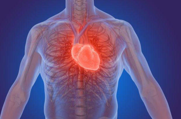 kalp krizi geçirme, kalp krizinde ilkyardım, kalp krizi nasıl geçirilir